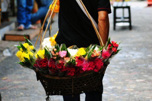 Flower varieties, Thailand, Pak Khlong Talat, Arts and culture, Bangkok, Thailand