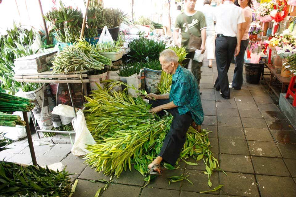 Mercato dei fiori a Bangkok , Pak Khlong Talat , Thai chili peppers , Thailand