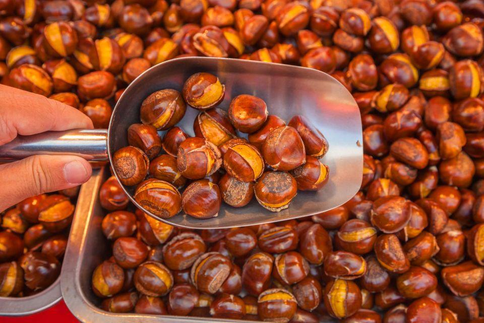 La châtaigne ardéchoise , A chestnut in its bur , France
