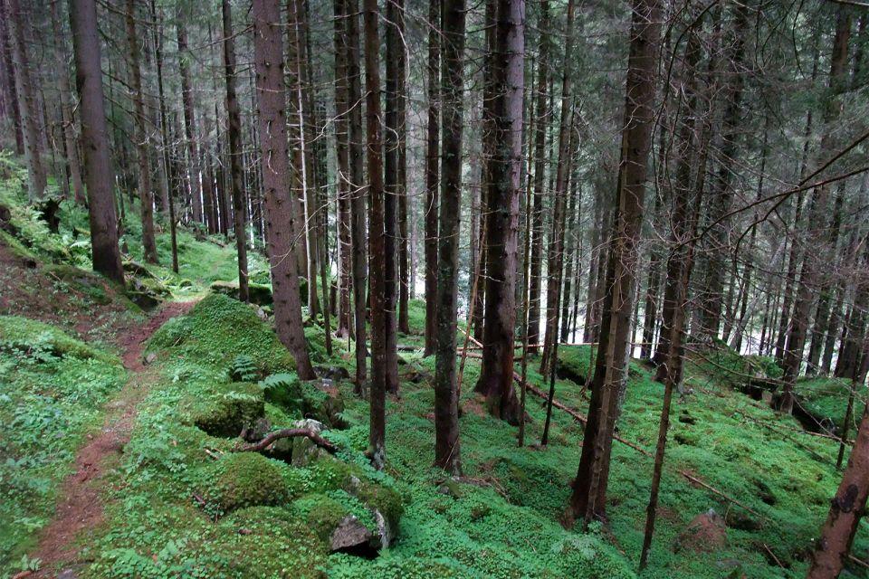 Réserve naturelle nationale des Aiguilles Rouges , Two diverse landscapes , France
