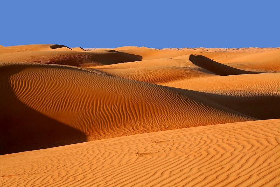 Le désert de Wahiba Sands , Caravane dans le désert du Wahiba Sands , Sultanat d'Oman