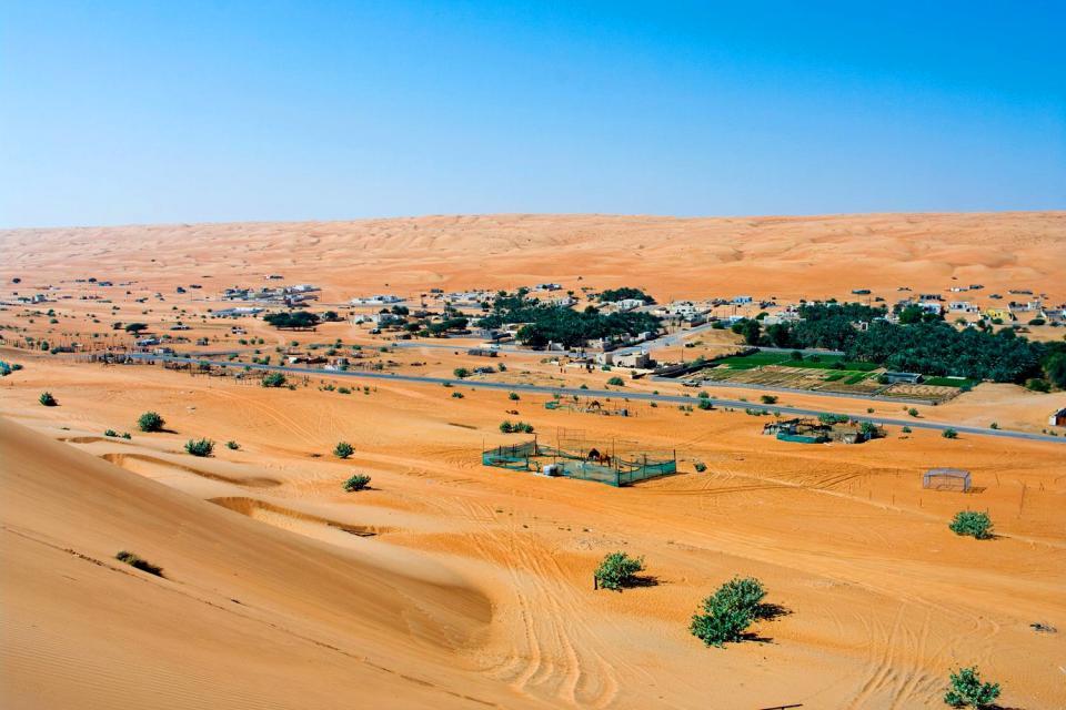 Le désert de Wahiba Sands , Un oasis dans le désert du Wahiba Sands , Sultanat d'Oman