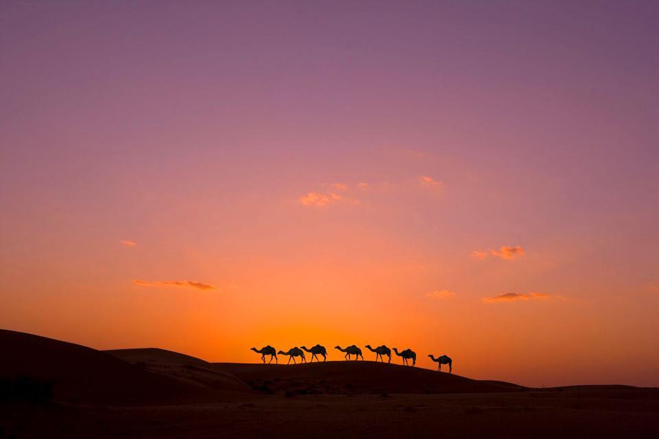 Die Wüste Wahiba Sands. , Sonnenuntergang in der Wüste Wahiba Sands. , Sultanat Oman