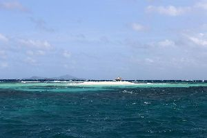 Morpion and Punaise , Saint-Vincent and The Grenadines