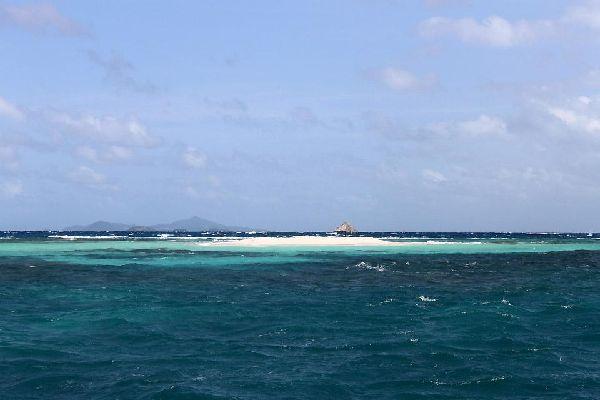 Morpion und Punaise , Punaise und Morpion , St-Vincent und die Grenadinen