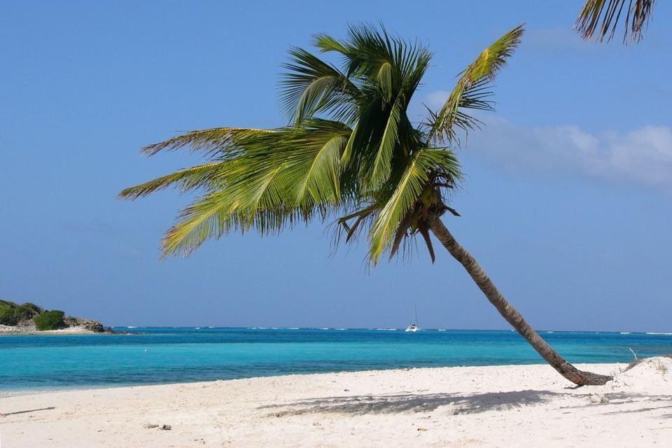 Mayreau und die Tobago Cays , St-Vincent und die Grenadinen