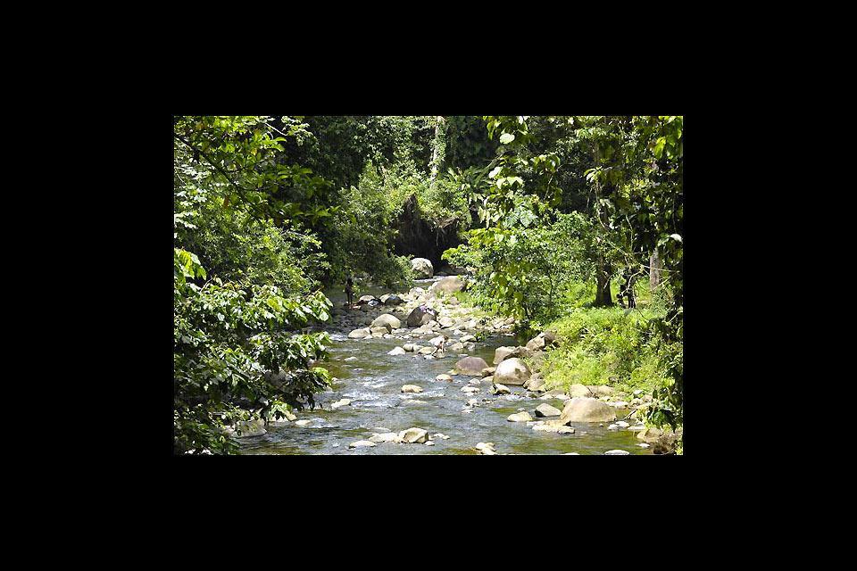 Parc zoologique et botanique des Mamelles , Le décor des Mamelles , Guadeloupe