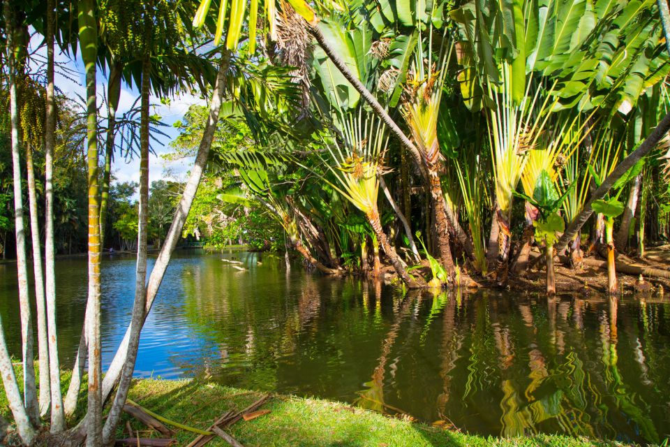 The Garden of Pamplemousses, Mauritius, Pamplemousses Garden, The flora, Grand Baie, Mauritius