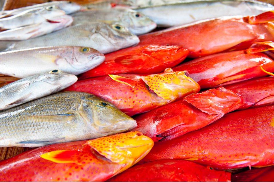 I litchi, La cucina mauriziana, Le arti e la cultura, Isola Mauritius