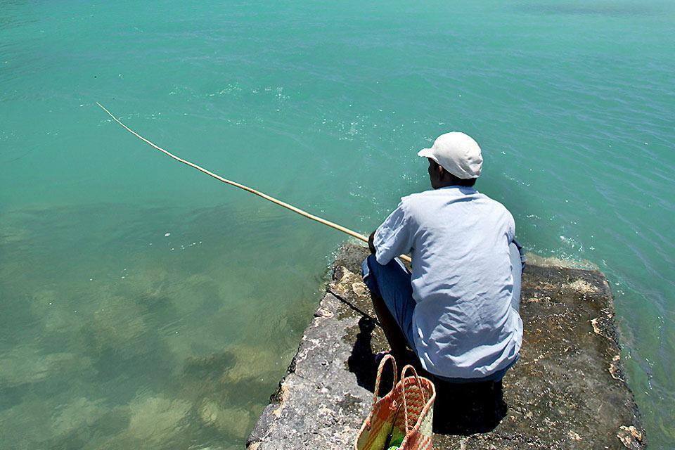 Fishing , The fishing industry, Mauritius , Mauritius