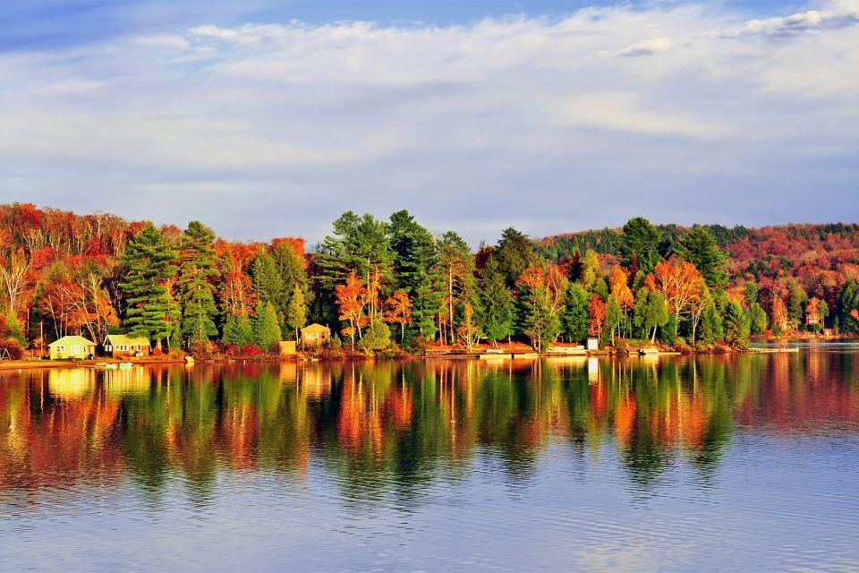 amérique, amerique, amerique du nord, canada, ontario, parc, algonquin, erable, lac, grands lacs