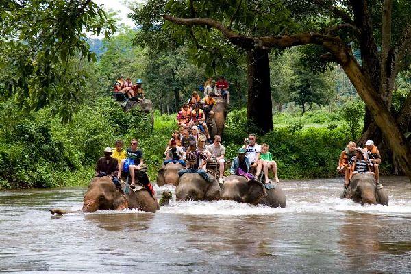 Les excursions , An elephant ride , Thailand