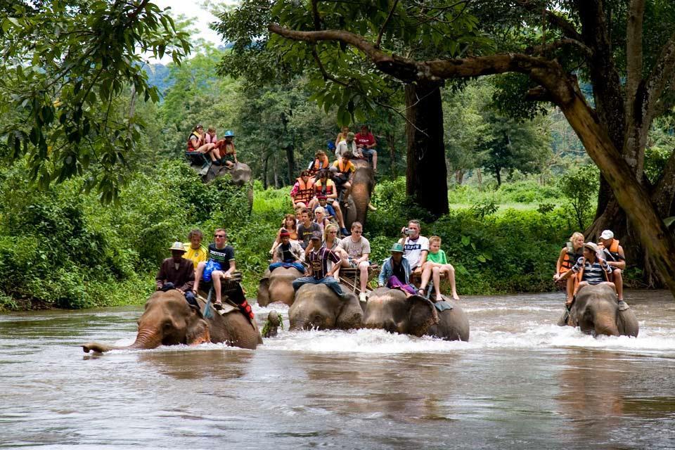 Les excursions , Promenade à dos d'éléphant , Thaïlande
