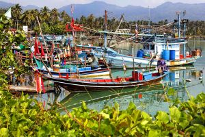 Koh Phangan , Boats in the village of Thong Sala , Thailand