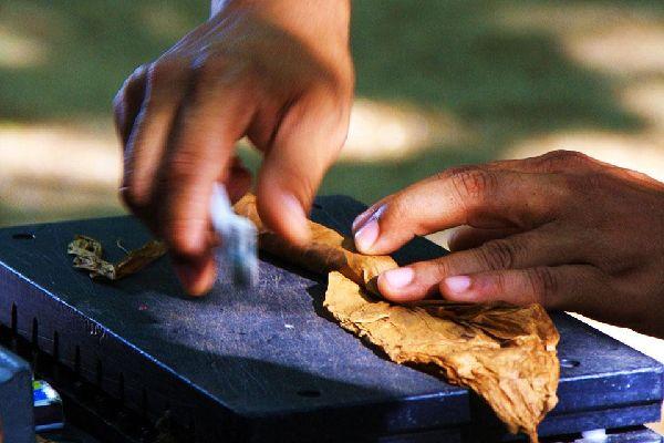 Los puros , El enrollado de los puros , República Dominicana