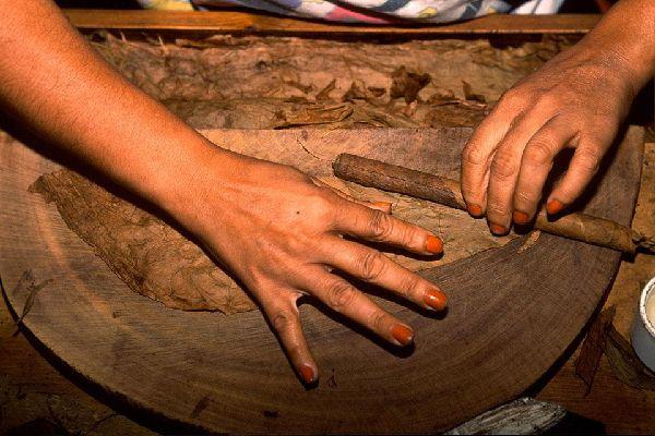 Los puros , Un trabajo de precisión , República Dominicana