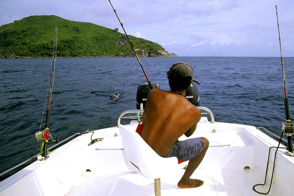 La pesca , Un pescador en acción , Las Seychelles