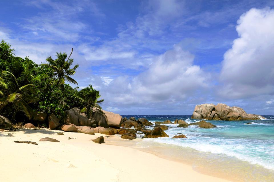 Cousine Island , Seychelles
