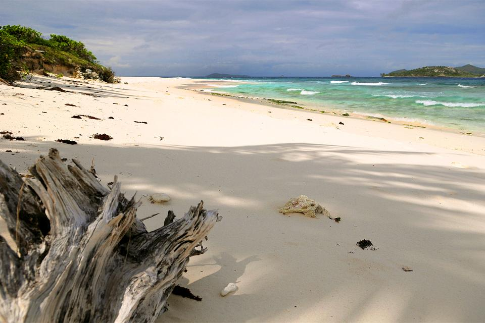 Cousine Island , Une île 100% nature , Seychelles