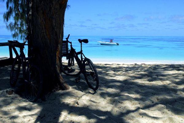 Denis Island , Seychellen