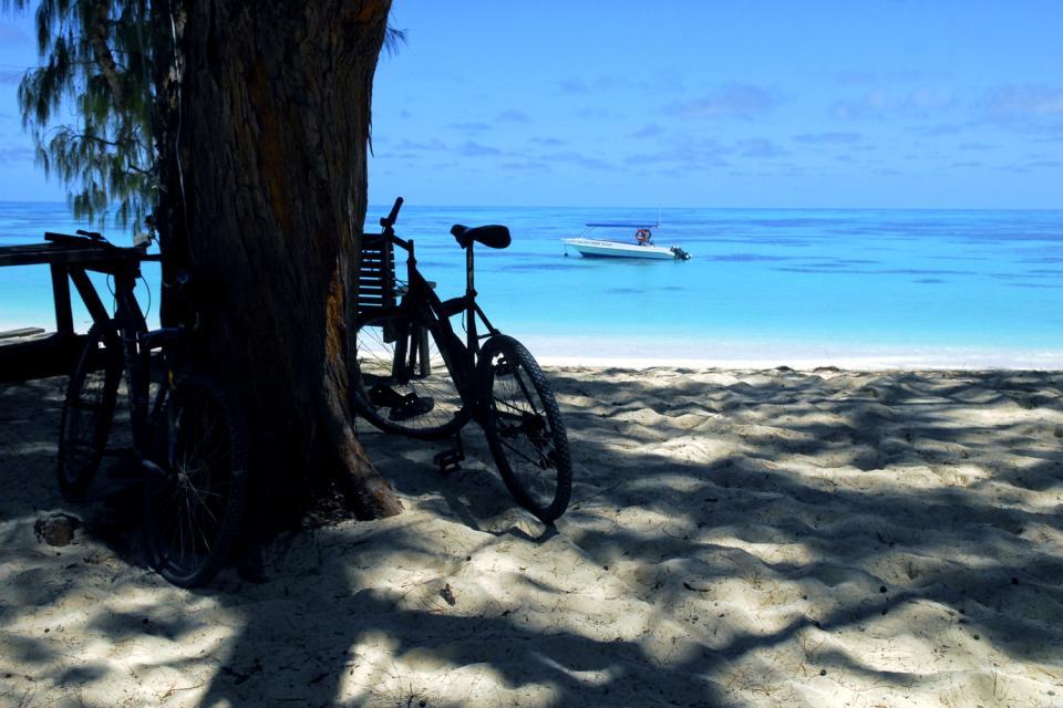 Denis Island , Las Seychelles