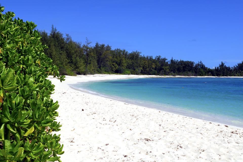 Denis Island , Un pequeño paraíso , Las Seychelles