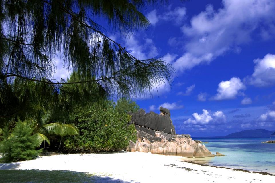 Cousin Island , Un patrimonio naturale d'eccezione , Seychelles