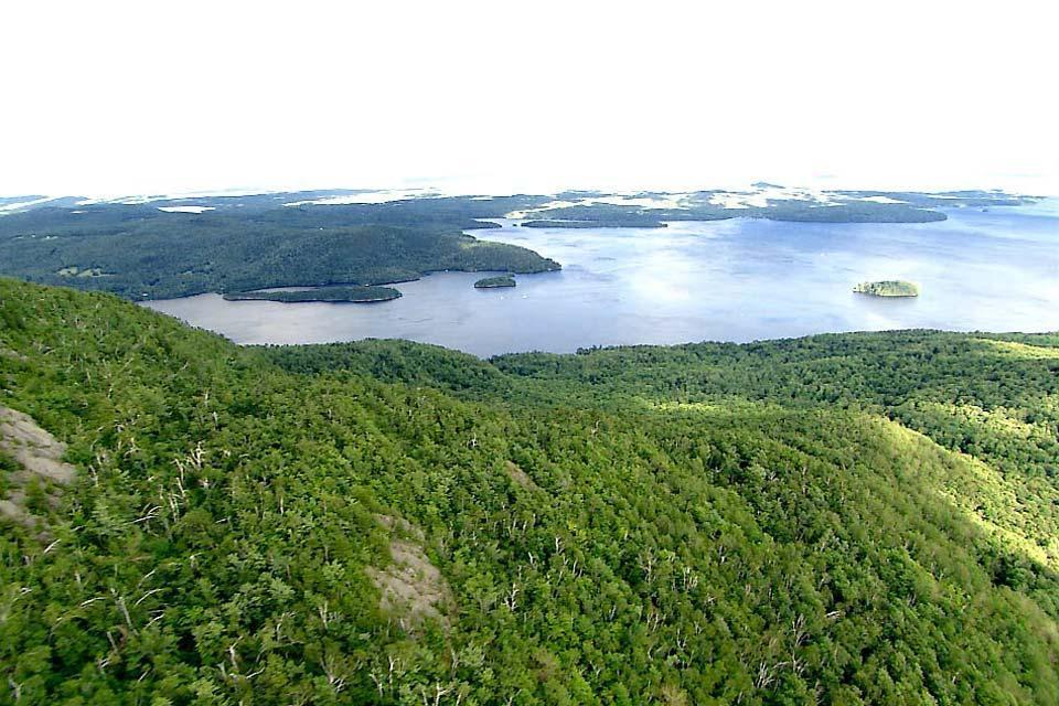 Les cantons de l'Est , Compétition de nage au Quebec , Canada