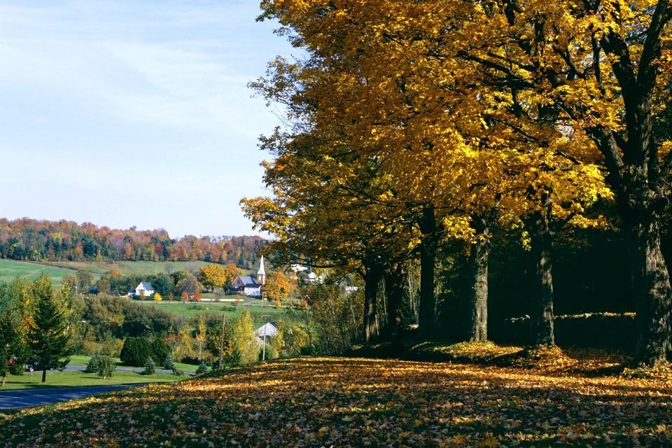 The Eastern Townships , Quebec's Wine Route , Canada