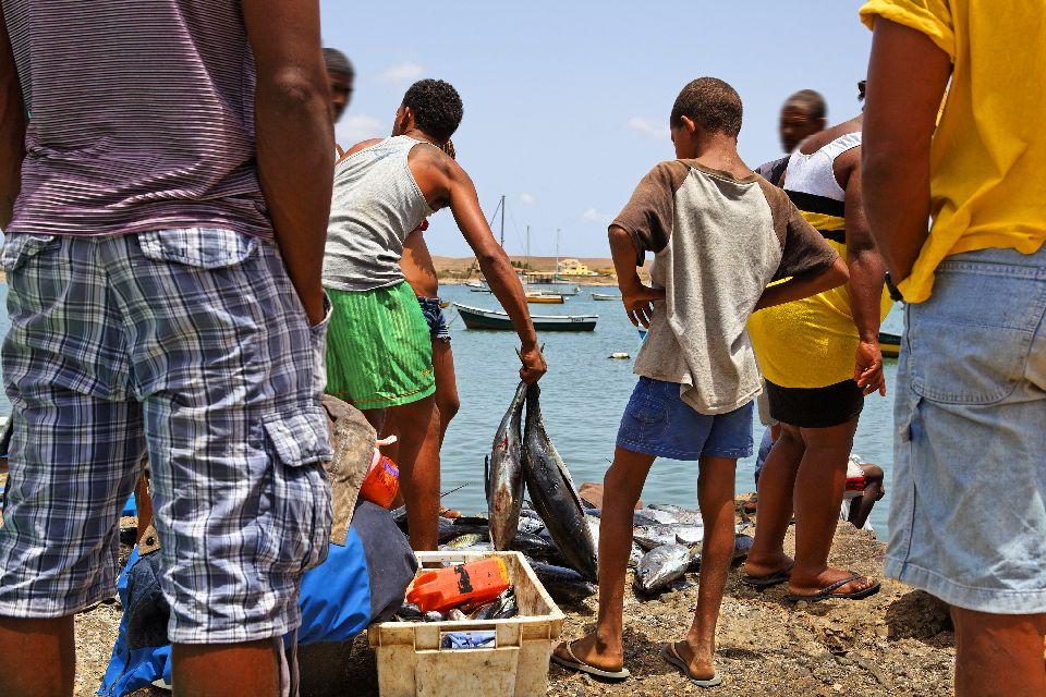 Palmeira und Buracona , Rückkehr der Fischer in Palmeira , Kap Verde