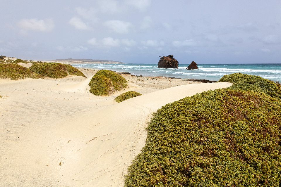 The wreckage of Cabo Santa Maria , The shipwreck in Boa Vista , Cape Verde