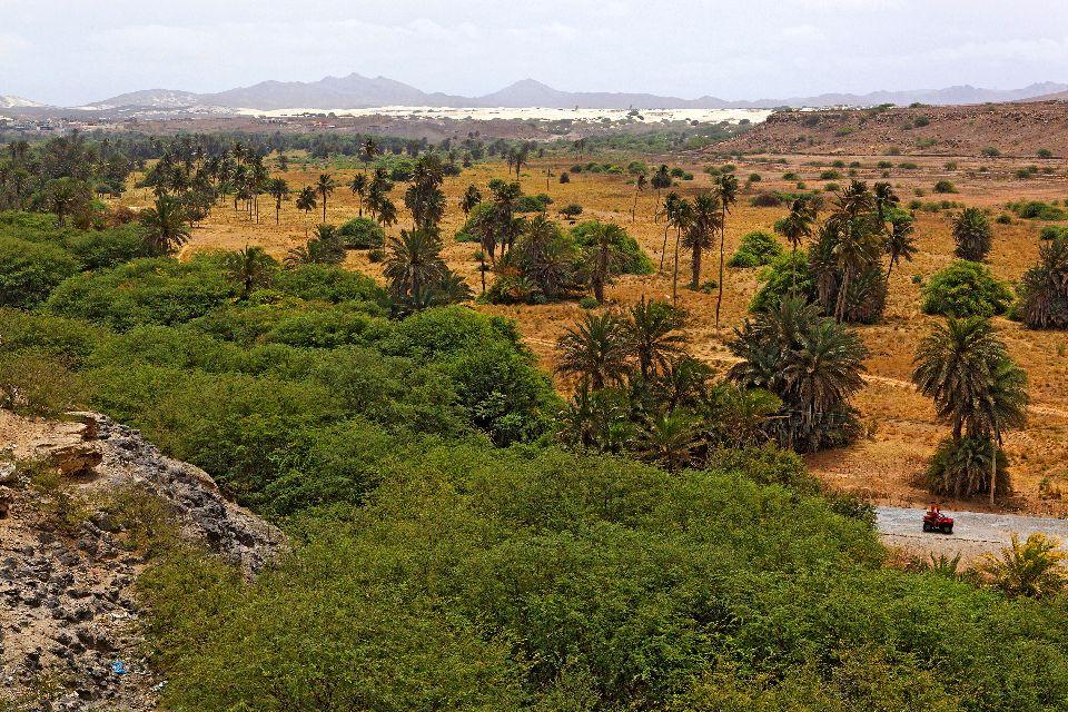L'isola di Boa Vista , L'oasi di Rabil , Capo Verde