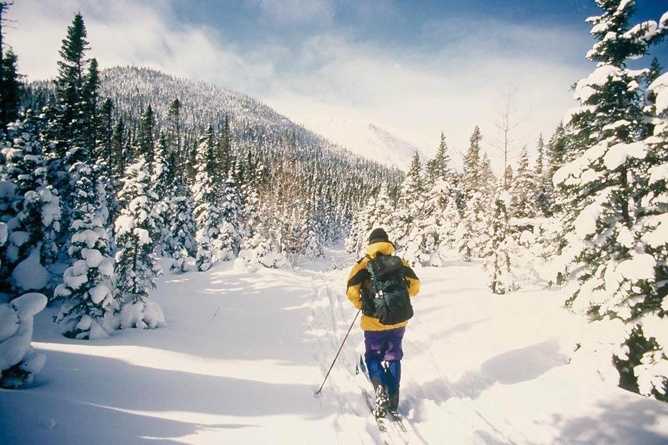 The Gaspésie peninsula , Winter in the Gaspésie region , Canada