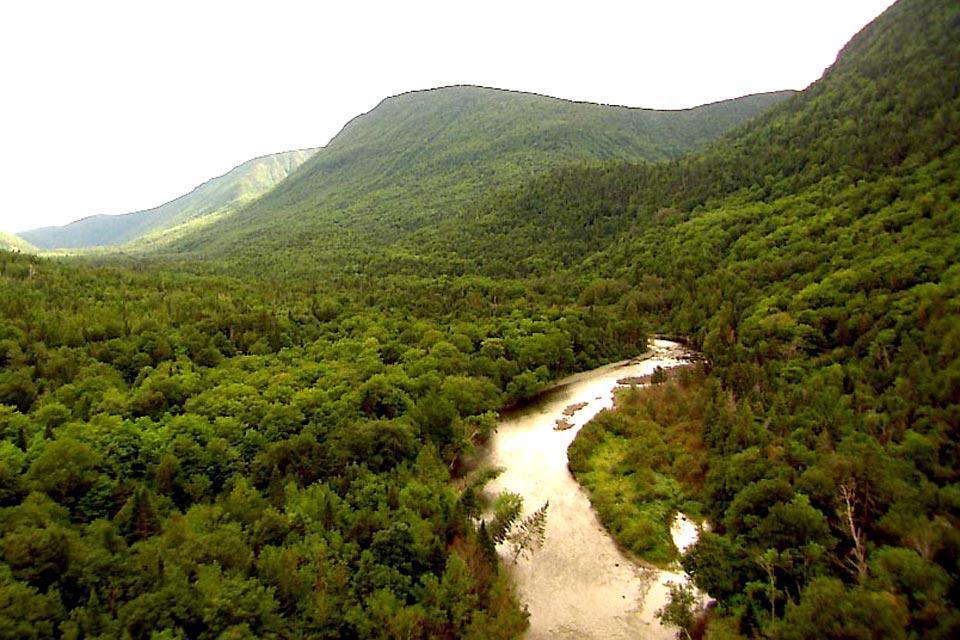 The Gaspésie peninsula , The Appalachians , Canada