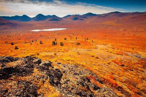 The tundra , The Tundra, Quebec, Canada , Canada