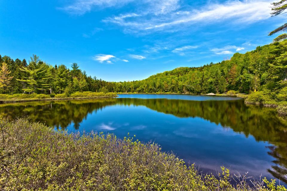 Les forêts mixtes du Saint-Laurent , Lacs , Canada