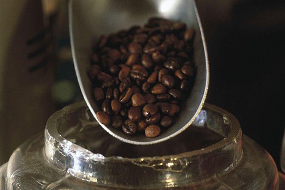 La gastronomie, café, vera cruz, mexique, alimentation, amérique, amérique du nord, arôme, boisson, agriculture, culture
