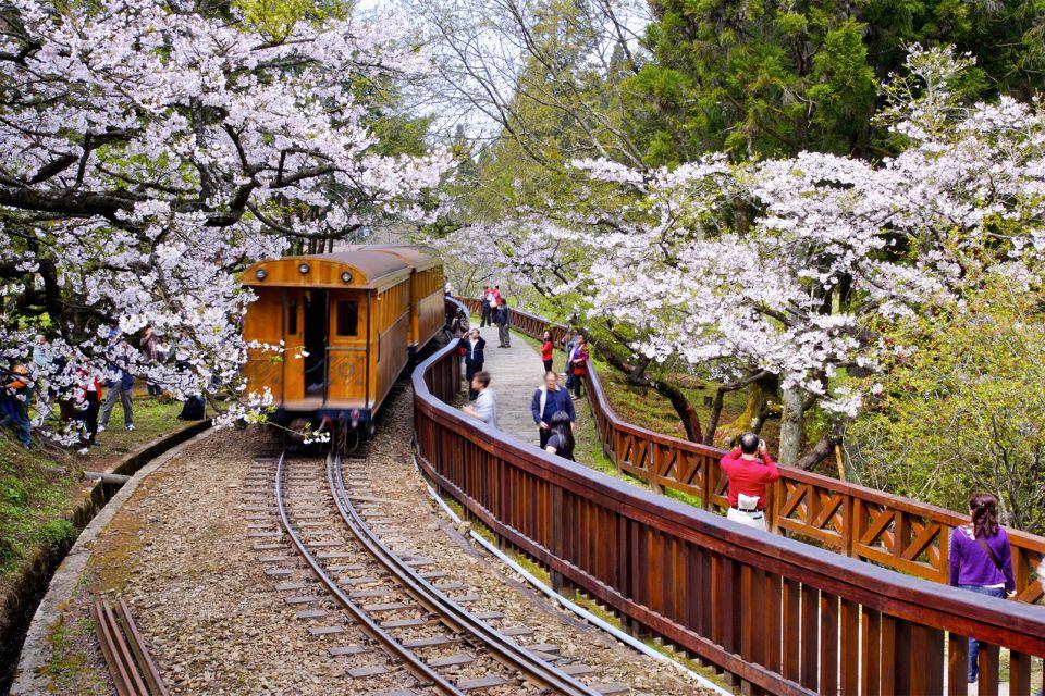The Alishan train, Ali-Shan, Landscapes, Taiwan