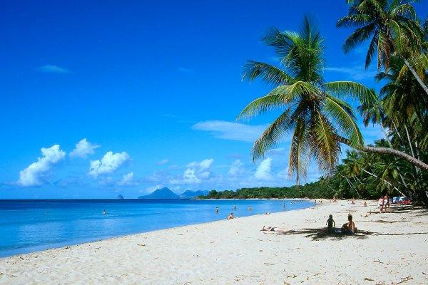 La plage des Salines , La grande anse des Salines , Martinique