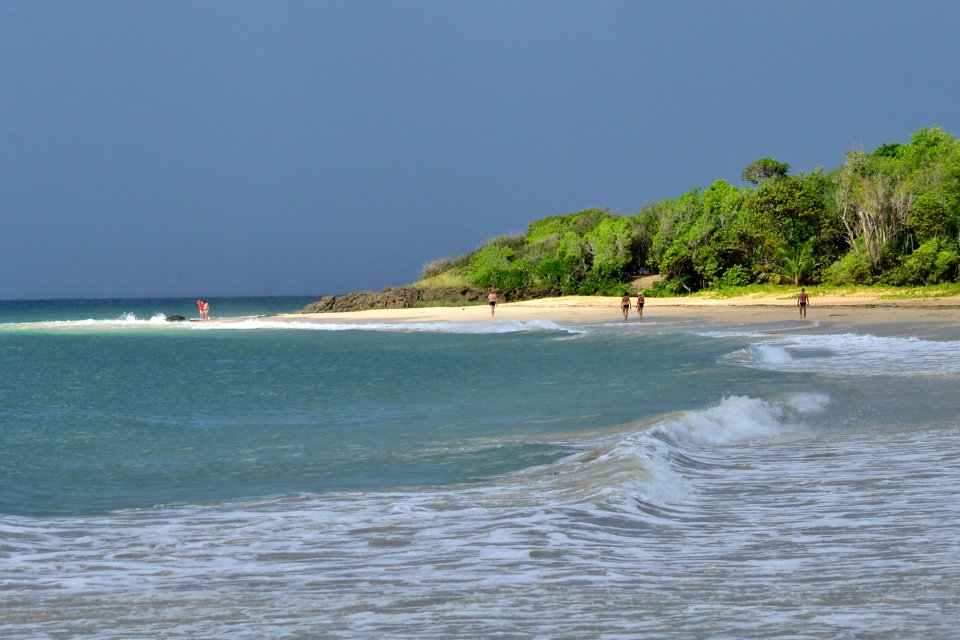 Les côtes, Antilles, caraibes, ile, martinique, outre-mer, dom-tom, amerique, plage, salines, sainte-anne, mer