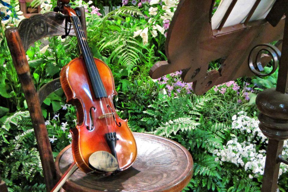 Les arts et la culture, musique, art, cap vert, afrique, instrument, violon, instrument