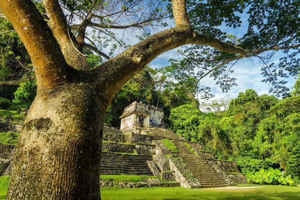 Le site maya de Palenque , Des temples de l'époque classique , Mexique
