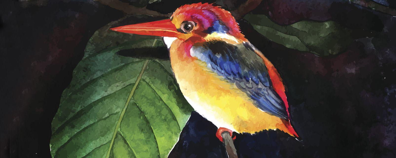 Wandmalerei, Die Malerei, Die Künste und die Kultur, Kapverden