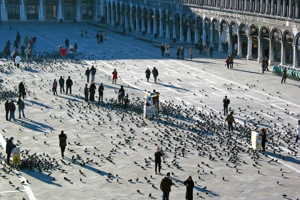 La place Saint-Marc , Promenade sur la place Saint-Marc , Italie