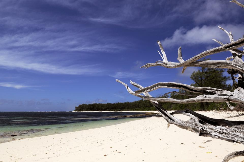 Desroches Island , Desroches Island Resort, un'isola, un hotel. , Seychelles
