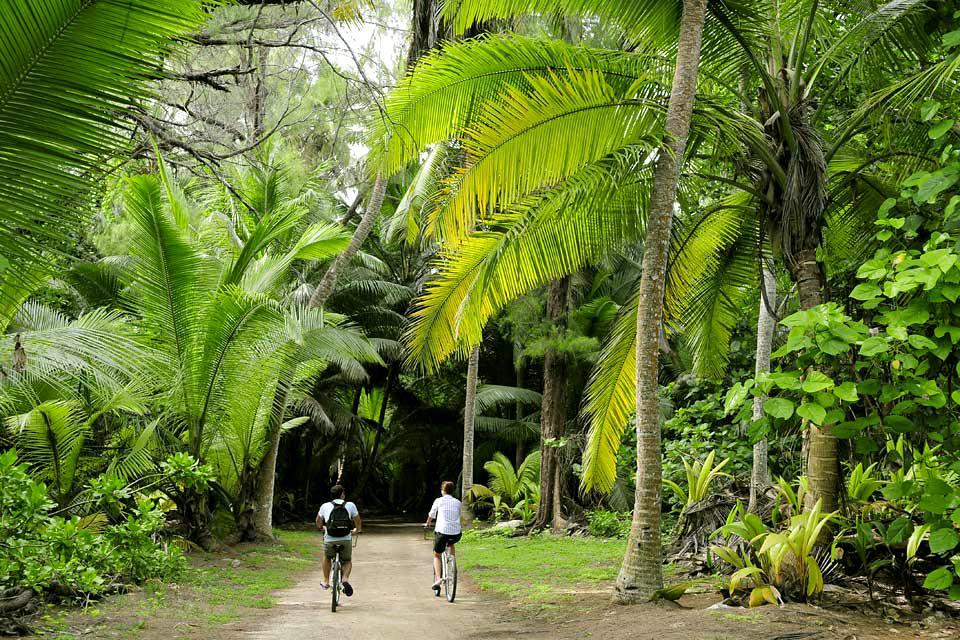 Desroches Island , Amaca in paradiso , Seychelles