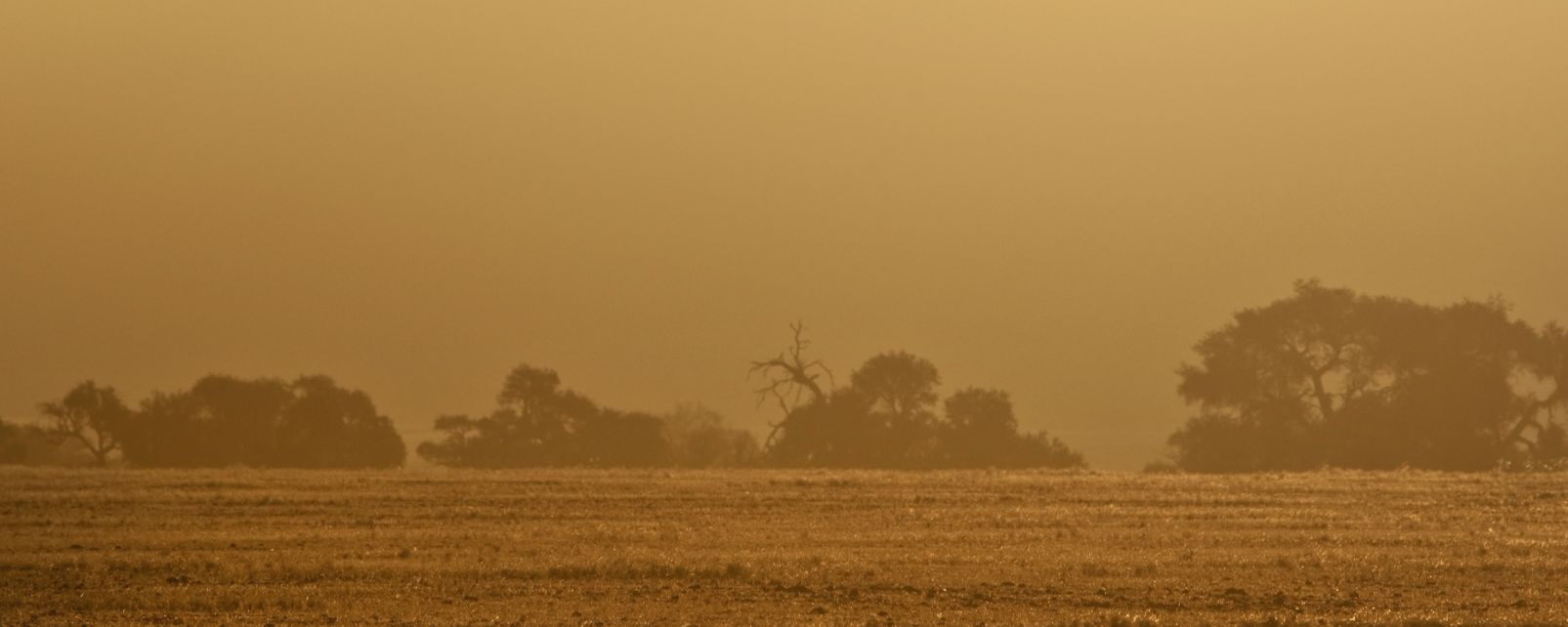 La pista di Niem, La strada di Niem, I paesaggi, Repubblica Centrafricana