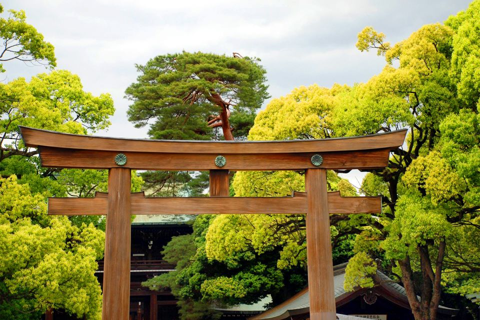 TOKYO- Meiji Jingu , Le Torii , Japon