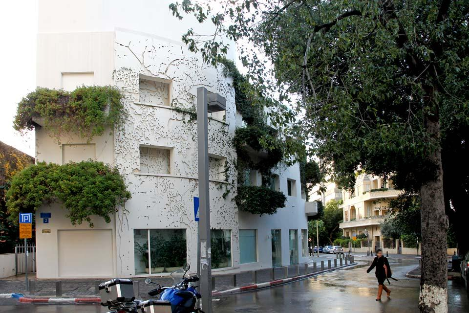 Tel Aviv- Le patrimoine Bauhaus , L'inspiration Bauhaus , Israël