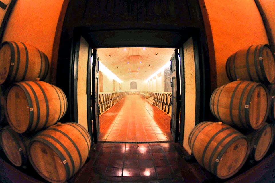 Les vignobles chiliens , The inside of a cellar , Chile